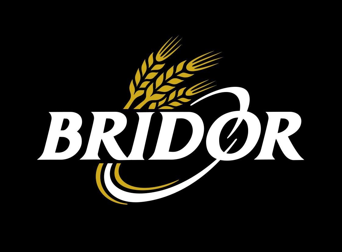 www.bridordefrance.com - logo