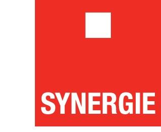 www.syn.cz - logo